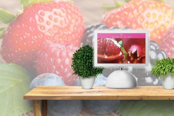 Sito Web Vendita Piccoli Frutti